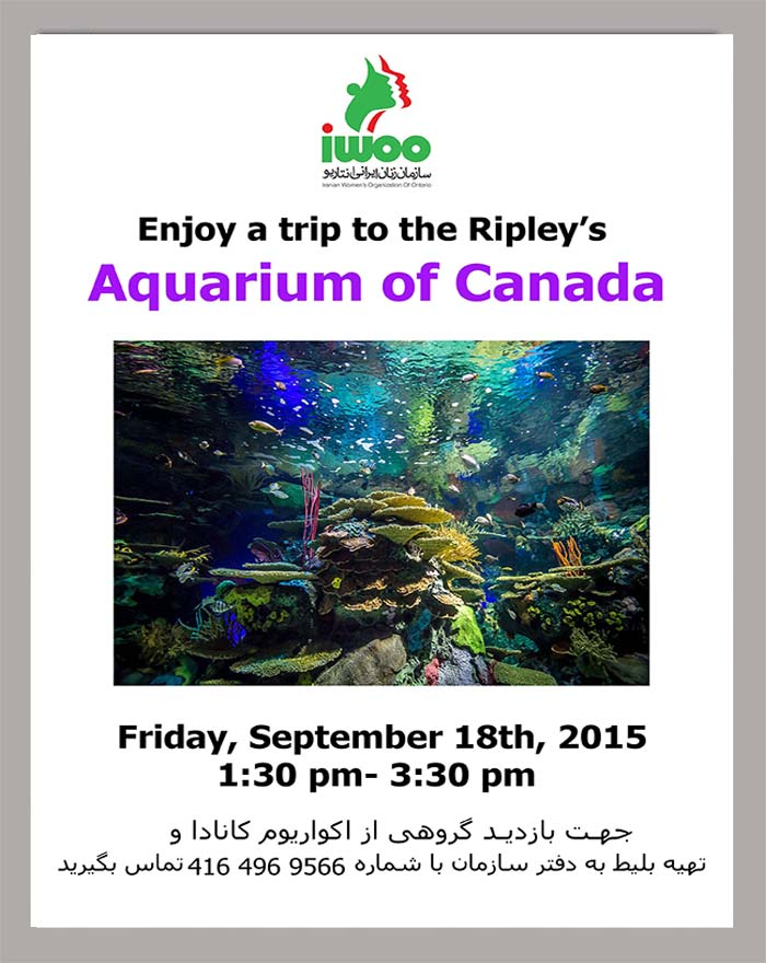 A Trips to Ripley's  Aquarium of Canada