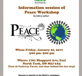 Peace Workshop