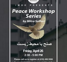 Peace Workshop Series